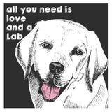 Портрет вектора близкий поднимающий вверх retriever labrador, на предпосылке черного квадрата Все вам влюбленность и собака Стоковые Изображения RF