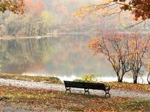 Портрет вида на озеро после обеда стоковое фото