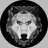 Портрет волка Низкий поли дизайн Иллюстрация вектора полигональная Стоковое Фото