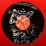 Портрет волка ` Howlin на показателе винила Стоковое Изображение