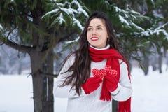Портрет девушки в зиме внешней Стоковые Фото