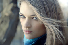 портрет девушки красотки стоковые фото