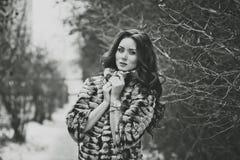Портрет девушки на прогулке 4973 зимы Стоковая Фотография RF