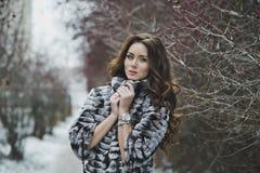 Портрет девушки на прогулке 4972 зимы Стоковые Изображения