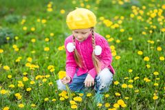 портрет девушки цветков Стоковое Изображение RF