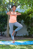 Портрет девушки делая йогу представления дерева Стоковое Изображение