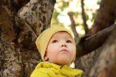 Портрет девушки на дереве Стоковая Фотография RF