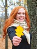 Портрет девушки с желтыми лист в руке в лесе осени, стоит около большого дерева Стоковое Изображение