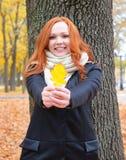 Портрет девушки с желтыми лист в руке в лесе осени, стоит около большого дерева Стоковые Фотографии RF