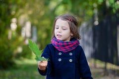 Портрет девушки preschooler в парке осени Стоковая Фотография RF