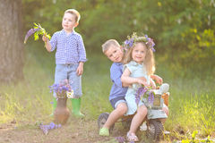 Портрет детей в лете Стоковая Фотография RF