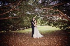 Портрет жениха и невеста под сенью деревьев Стоковые Изображения RF
