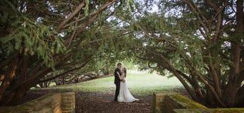 Портрет жениха и невеста под сенью деревьев Стоковое фото RF