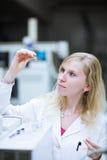 Портрет женских исследователя/студента химии Стоковое Изображение