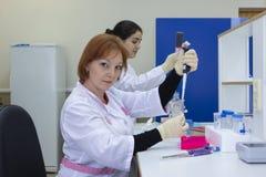 Портрет женского исследователя проводя исследование исследование в лаборатории стоковые фотографии rf