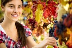 Портрет женщины в винограднике Стоковое Фото