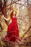 Портрет женщины в длинном красном платье Стоковые Фотографии RF