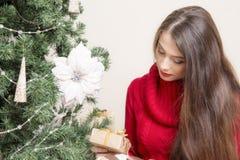 Портрет женщины около рождественской елки Стоковые Фото