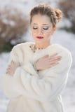 Портрет женщины, ферзь снега стоковые изображения