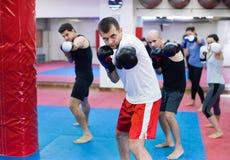 Портрет женщин и мужчин тренируя в перчатках бокса Стоковая Фотография RF