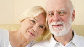 Портрет жизнерадостных симпатичных старших пар сидя на софе дома Иметь полезного время работы ослабляя видеоматериал