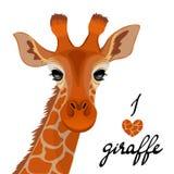 Портрет жирафа на белой предпосылке Стоковые Изображения RF