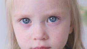 Портрет застенчивой красивой маленькой красивой белокур-наблюданной девушки с большими глазами видеоматериал