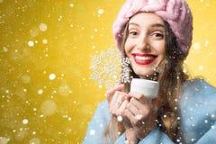 Портрет зимы женщины с лицевой сливк Стоковое Изображение