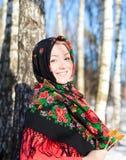 Русская зима Стоковые Фотографии RF