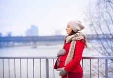 Портрет зимы красивой беременной женщины Стоковые Изображения RF