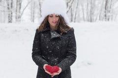 Портрет зимы стоковое фото