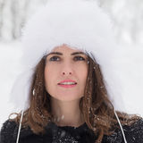 Портрет зимы стоковое изображение rf