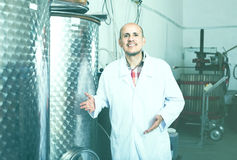 Портрет зрелого мужского работника винодельни стоя на фабрике i вина Стоковая Фотография