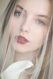 Портрет изящного искусства девушки в винтажном платье стоковые изображения