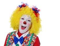 портрет клоуна Стоковое Фото