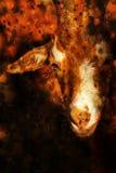 Портрет козы, фантазия Стоковые Изображения RF
