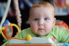 Портрет конца-вверх милого младенца в игрушке спортзала игры Стоковая Фотография RF