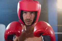Портрет конца-вверх уверенно мужского боксера нося красные headgear и перчатки Стоковое Фото