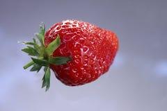 Портрет конца-вверх яркого красного и сияющего плодоовощ клубники, плавая иллюзии стоковые фото