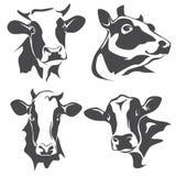 Портрет коровы головной бесплатная иллюстрация