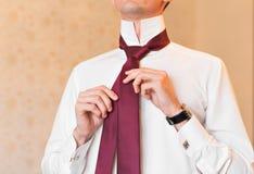 Портрет красивого бизнесмена в костюме кладя на конец-вверх галстука внутри помещения Стоковое Изображение RF