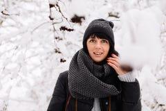 Портрет красивой девушки в лесе зимы Стоковое Фото