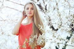 Портрет красивой девушки в зацветая дереве весны Стоковое Фото