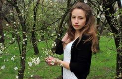Портрет красивой девушки стоковое фото rf