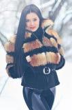 Портрет красивой женщины в зиме Стоковая Фотография