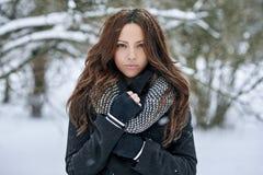 Портрет красивой женщины в зиме Стоковые Изображения