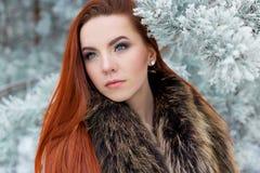 Портрет красивой милой рыжеволосой девушки в лесе зимы Стоковая Фотография