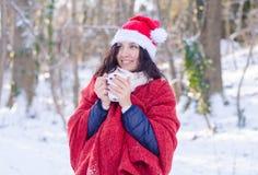 Портрет красивой усмехаясь девушки в шляпе santa в лесе зимы Стоковые Фотографии RF