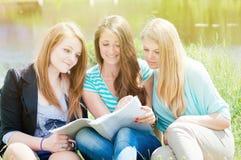 Портрет красивых девушек сидя на траве Стоковые Фото