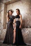 Портрет красивых молодых женщин близнецов в шикарных платьях вечера Стоковое фото RF